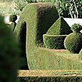 Topiary_topiaire_ourique