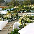 The_white_garden_jardim_branco