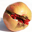 Pomegranate_grenade_rom
