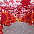 Redondo_vermelho