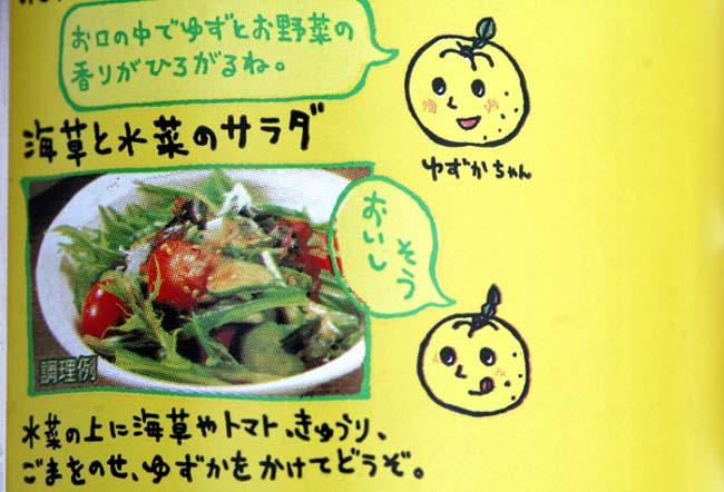 Yuzu dressing yuzu sauce salade