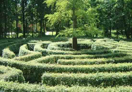 Labyrinth Schonbusch Labirinto