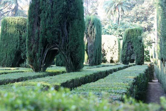 Labyrinh door Labirinto portao portes labyrinthe