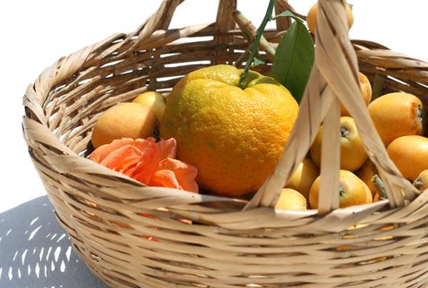 Loquat bitter orange Orange amère bibasse bigarade