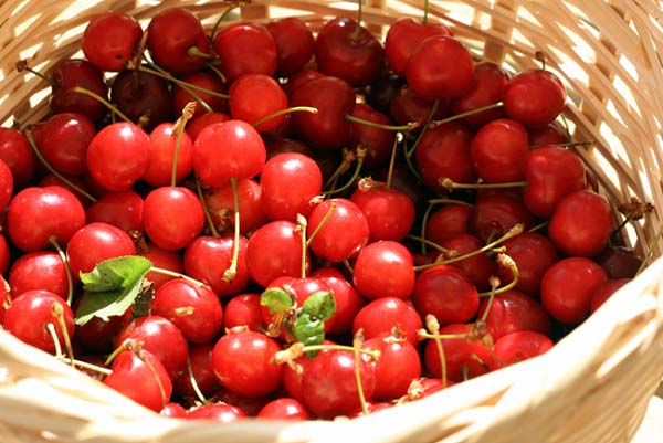 Cherry cerise cereja
