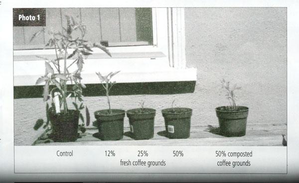CRFG 2009 07 Nick F. Lolonis toxicity coffee toxicité  marc de café