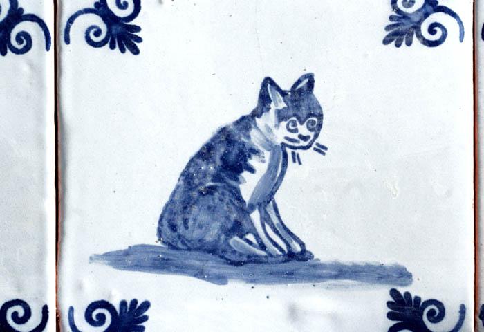Cat chat PIC Charles gato