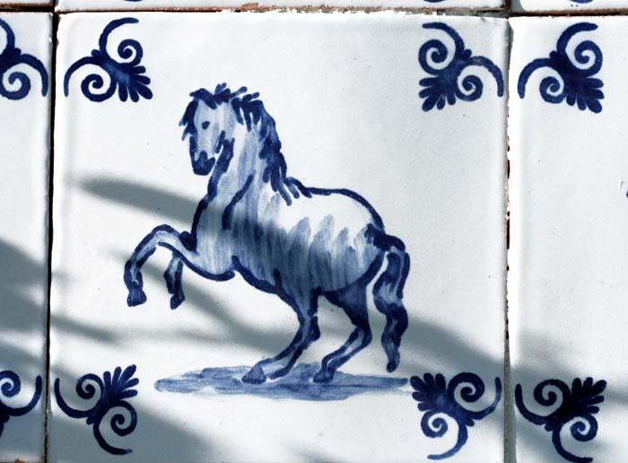 Horse cheval cavalo