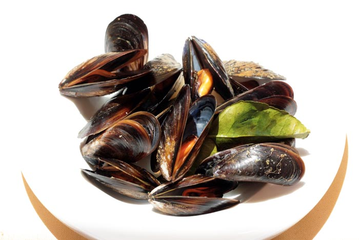 Mussels Moules