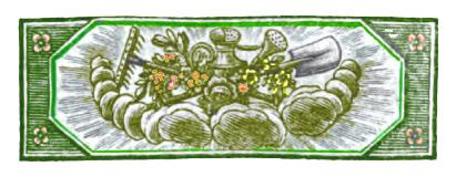 Vignette jardin couleur
