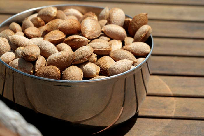 Dry almonds amandes seches
