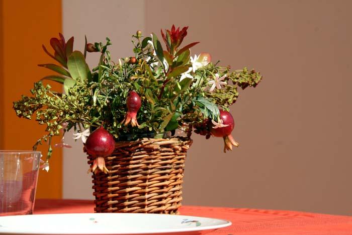 Bouquet grenade jasmin