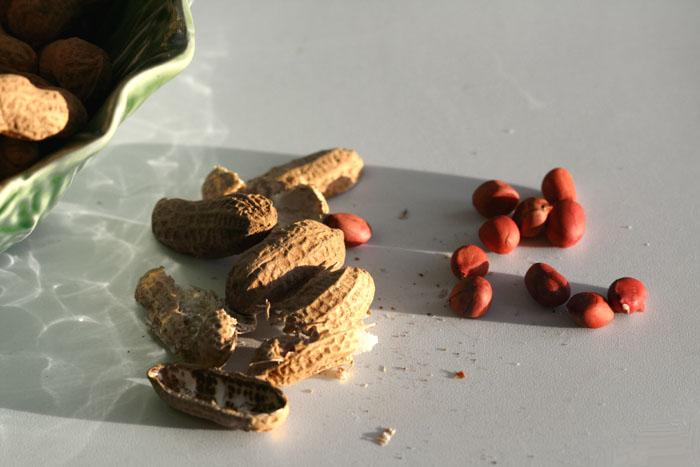 Peanut arachide amendoim 花生