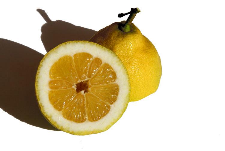Limao lemon citron
