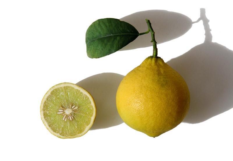 Mellarose lemon limao