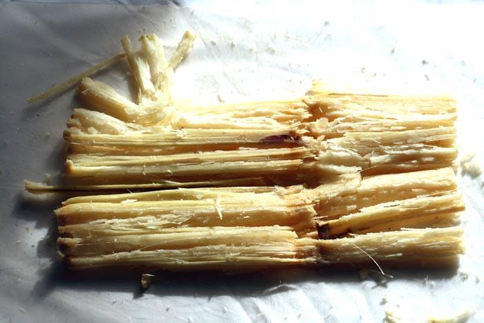 Sugar cane canne à sucre