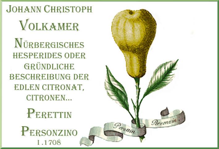 Lemon Pear Limon Perettin Personzin