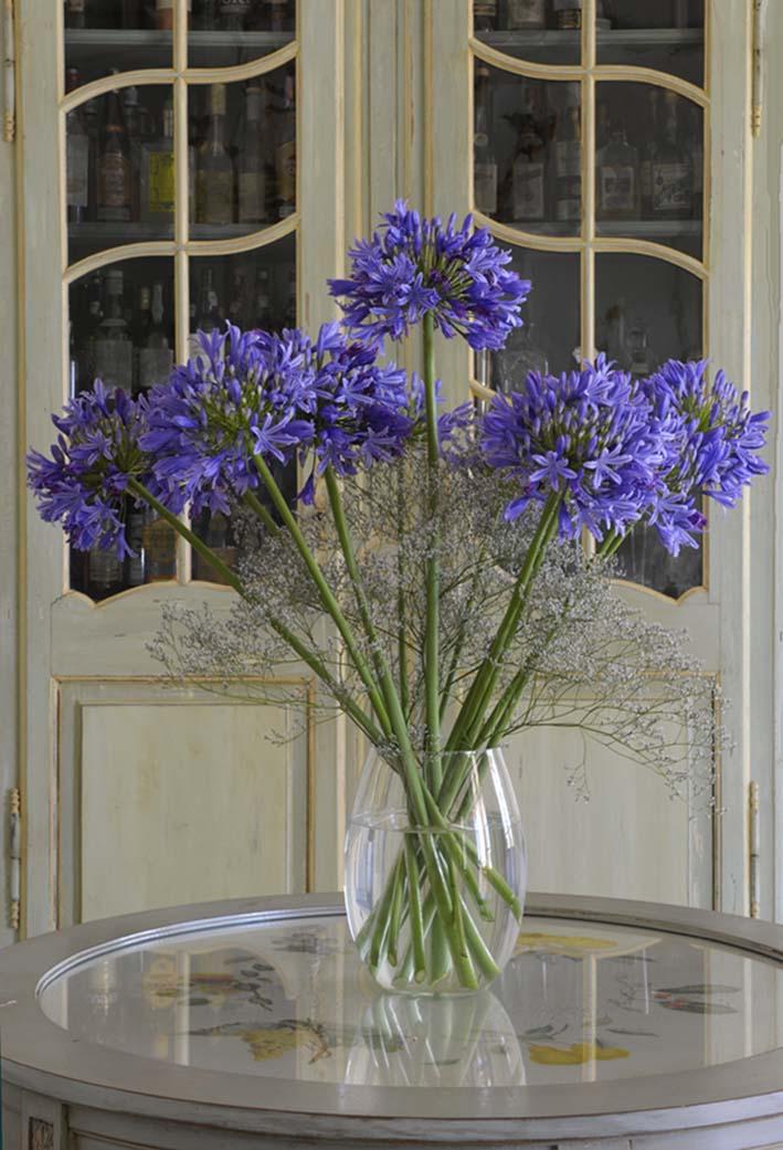 Bouquet agapanthes Beatrice Pichon