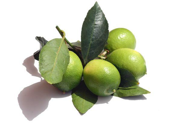 citron vert lime utilisation du la cuisine du jardin. Black Bedroom Furniture Sets. Home Design Ideas