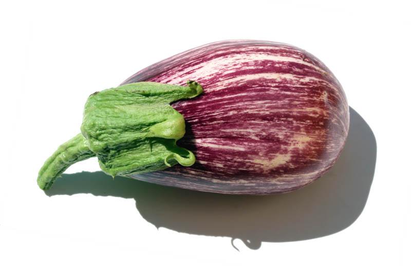 Listada de Gandia eggplant  aubergibe