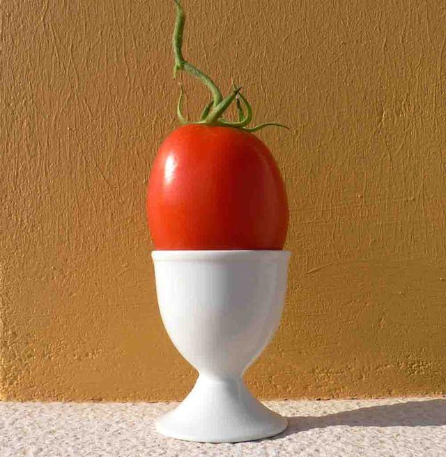 Tomatoegg