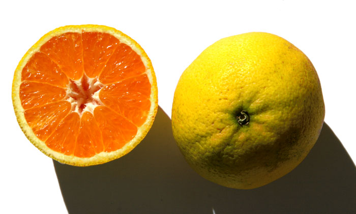 Laranja-limao orange-citron
