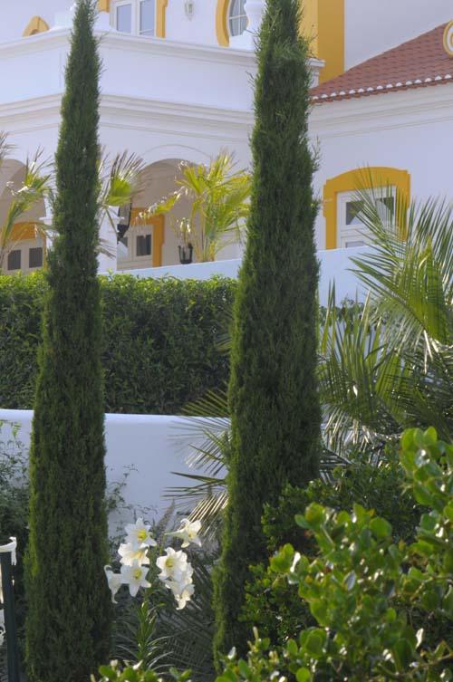 Wihte garden jardin blanc Béatrice Pichon