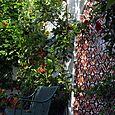 Jardin rouge  banc Béatrice Pichon