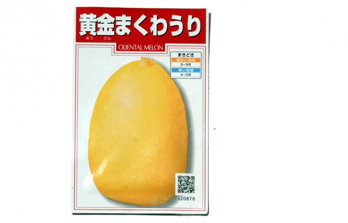 Melon oriental makuwa Japon 真桑瓜