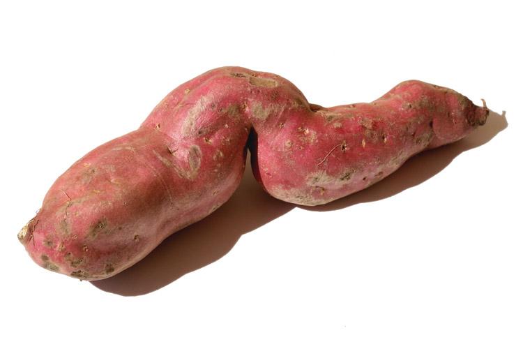 Sweet potato patate douce  Batata doce patata dolce