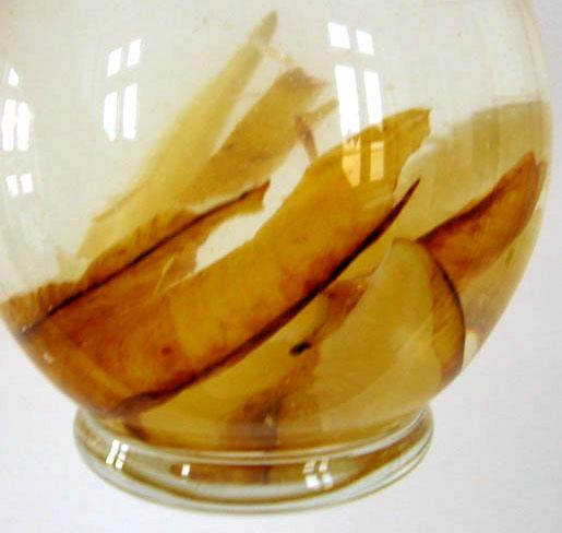 Star fruit water