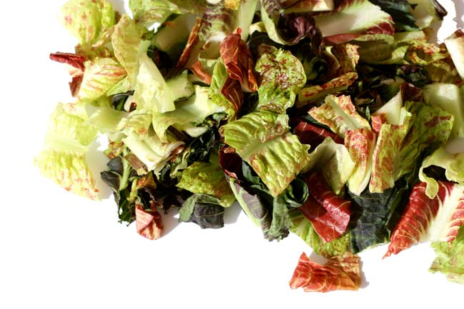 Salade rouge red salad, alface vermeilha
