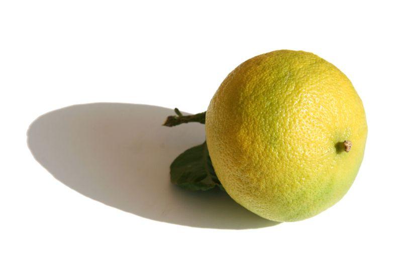 ترنج برغموت citrus bergamia