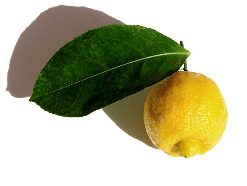 برغموت bergamote