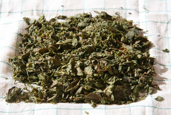 Yellow tea Chinese 黃茶; pinyin huángchá