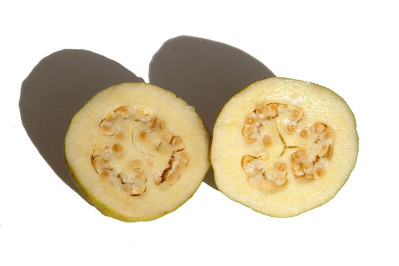 Guava white goyave blanche guaiava