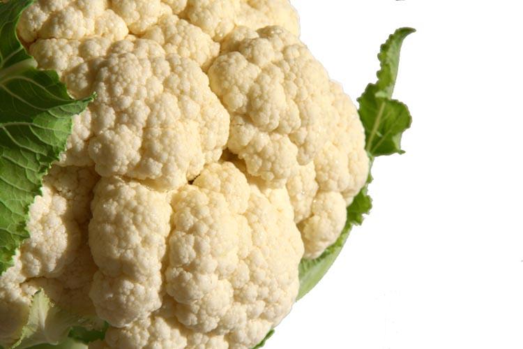 Cauliflower cove flore chou fleur