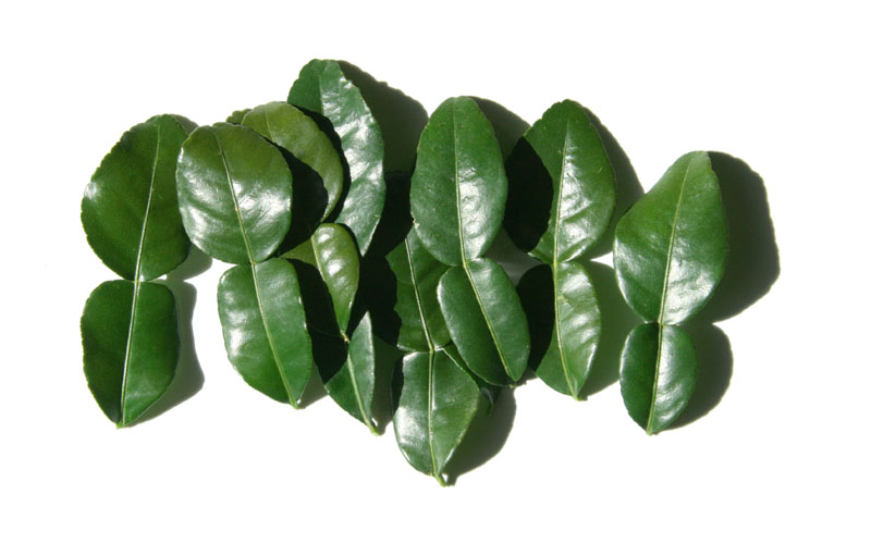 Kruët コブミカン kaffir lime