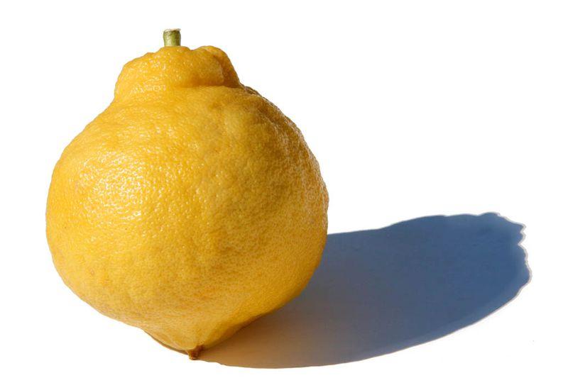 Lime de tunisie