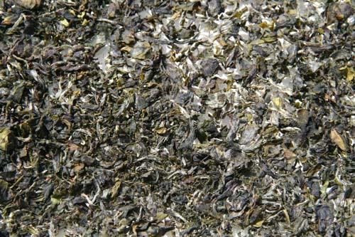 Thé jaune sec Yellow tea dry Chinese 黃茶; pinyin huángchá