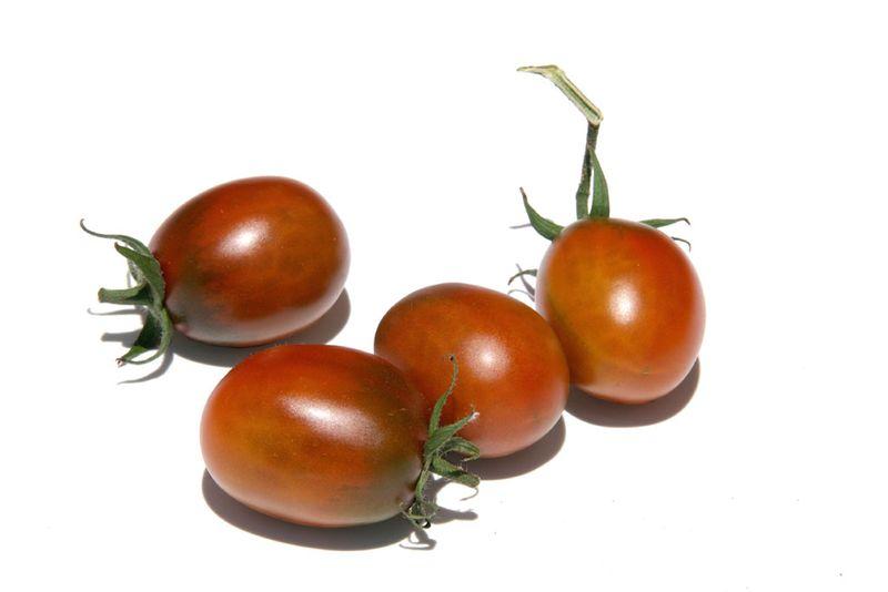 Tomato prune noire tomate
