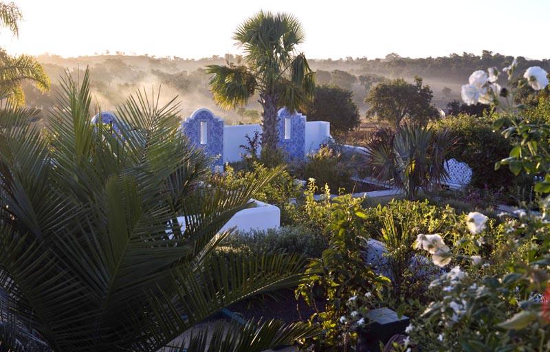 Palmier au centre