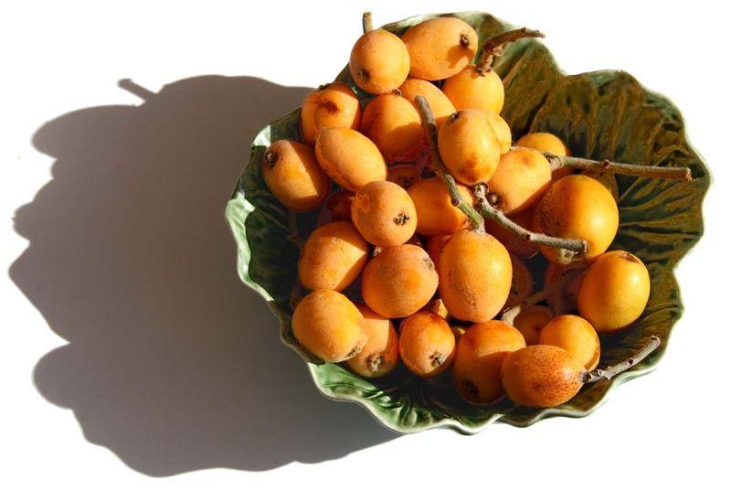 ビワ bibasse nefle du Japon