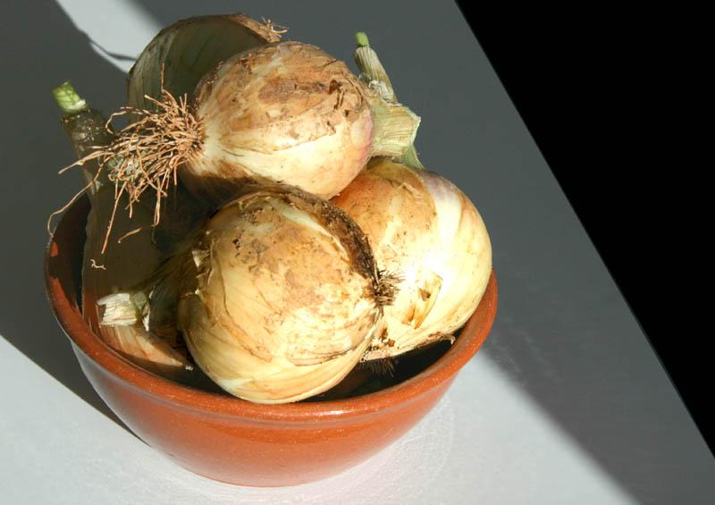 Oignons 洋蔥