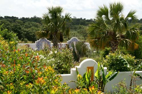 Mediteranean garden