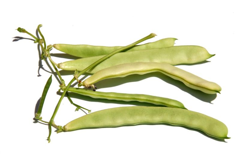 Mangetout Green beans