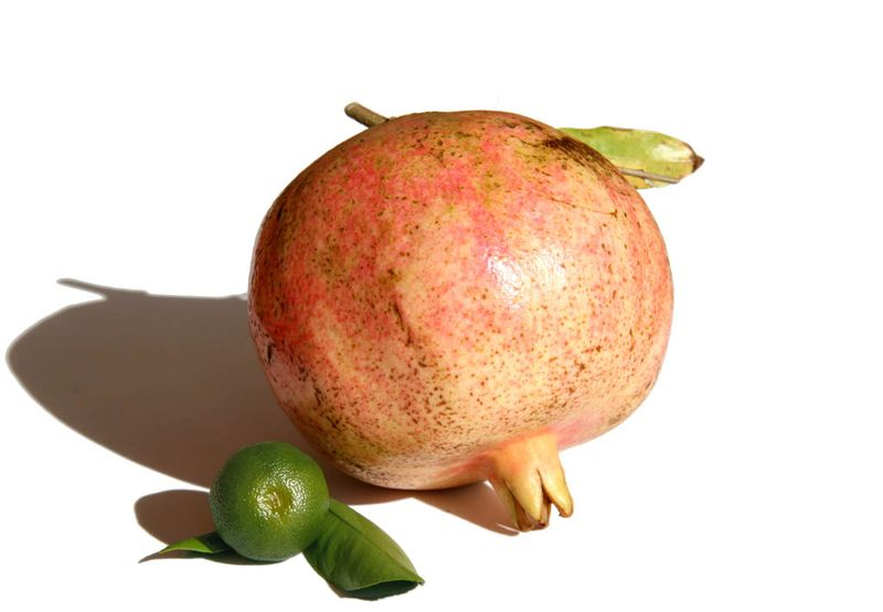 Granado calamondina