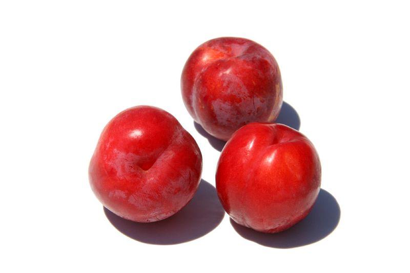 Red plum prune rouge