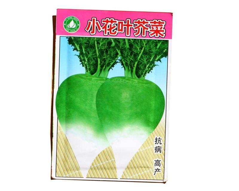 Radis vert chinois