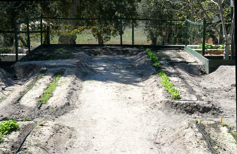 Jardin sable